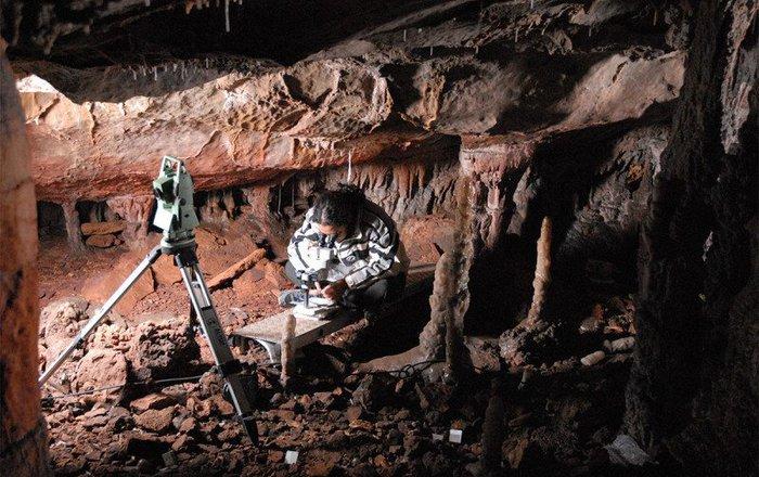 Древнейшие люди устилали пещеры коврами изшкур львов— археологи