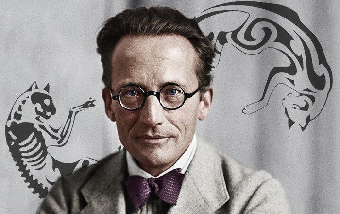 Нобелевские лауреаты: Эрвин Шредингер. Человек и кошка