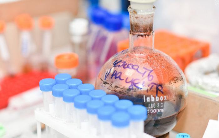 Создана платформа для уничтожения раковых клеток