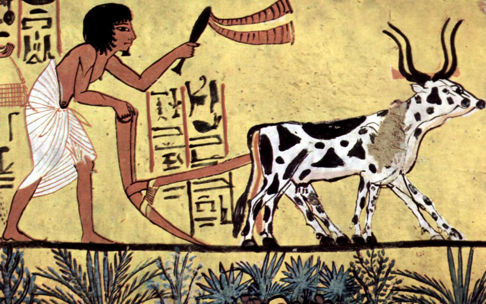 картинка человек в истории и культуре любом случае такими