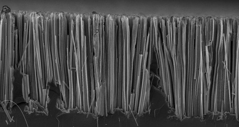 В борьбе с раком помогут кремниевые нанонити